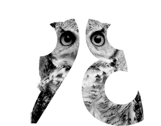 Bluestone98 owl graphic