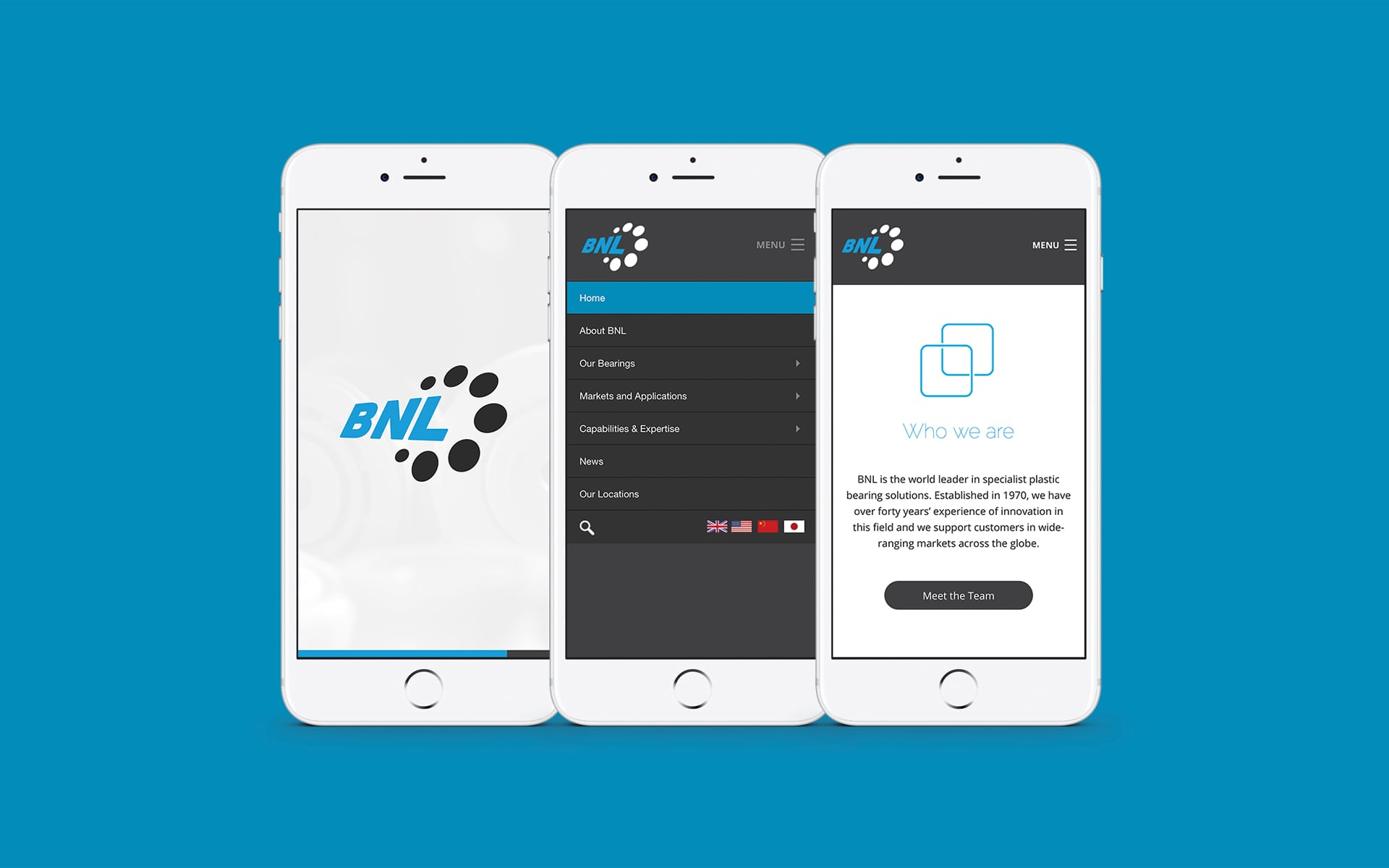 responsive website design and build by Bluestone98